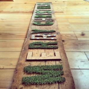芝生シート01